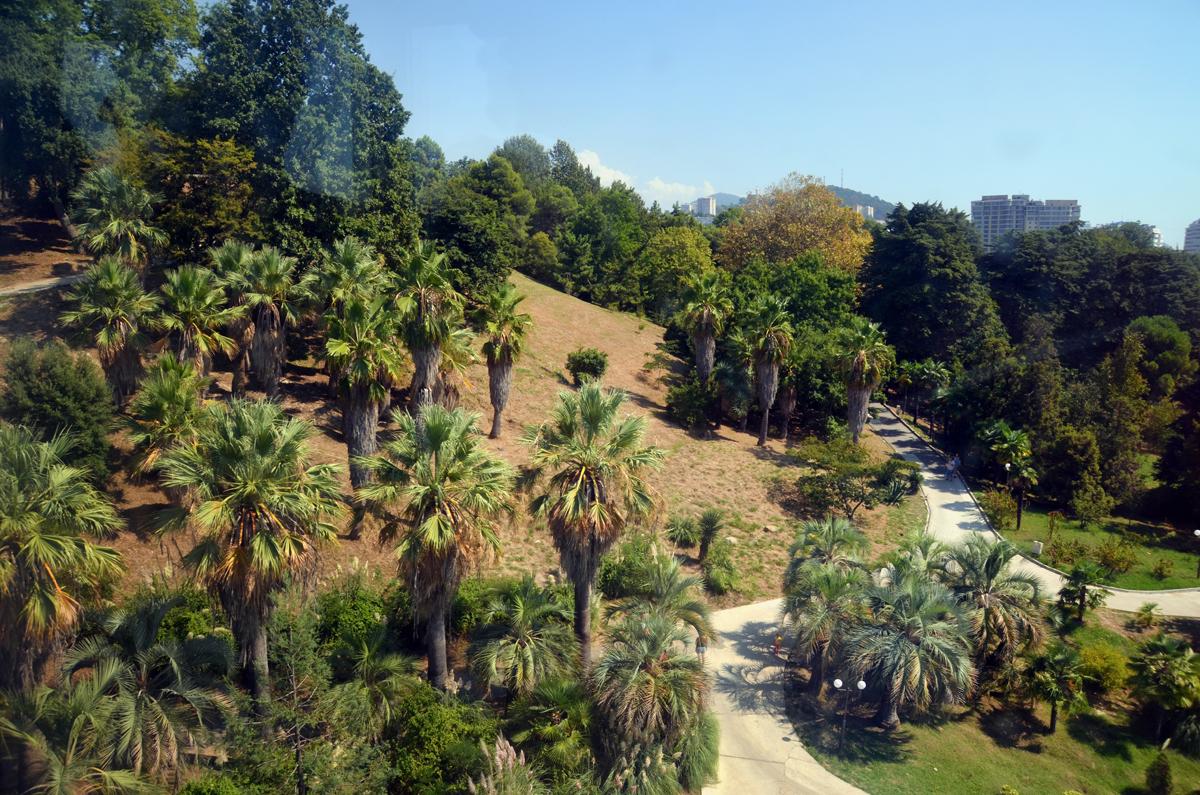 6. Вид на парк из кабинки.